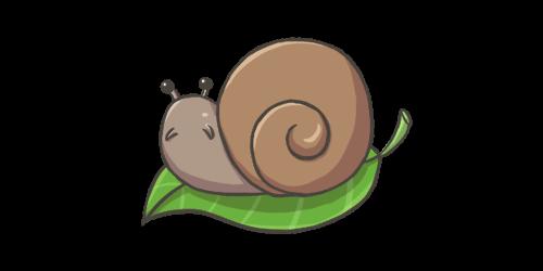 snail500